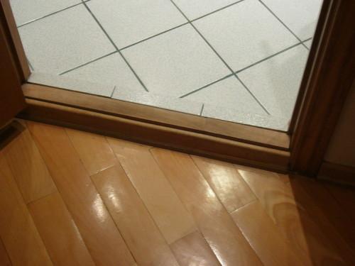фото: Вид межкомнатной двери с порогом